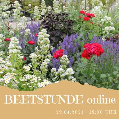 Beetstunde #2 (29.04.21)