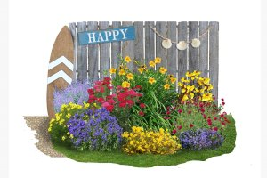 Achillea-Paket 'Happy' Sortiment